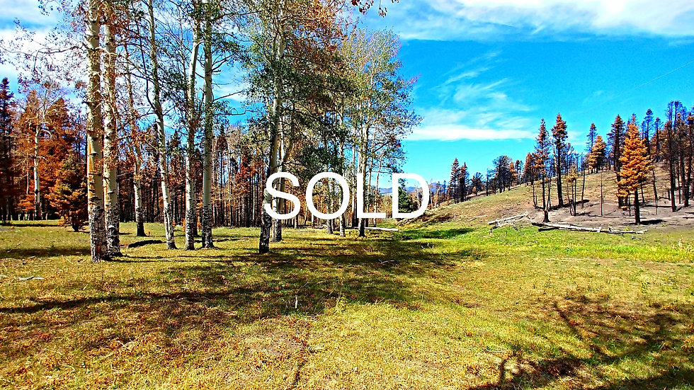 Forbes Park Road Lot 955