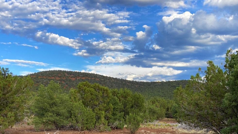 ARIZONA - Apache County - Cedar Ridge - Road N3323 Lot 60 (1.02-acres)
