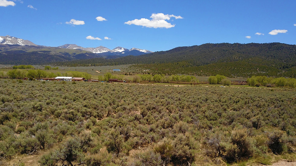 COLORADO - Costilla County - Highlands - Whiskey Pass Rd Tract 23 (5.1 acres)