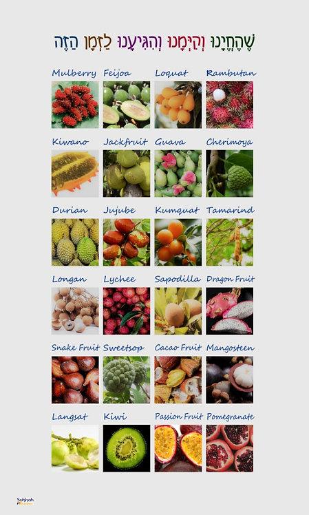 New Fruit Sukkah Banner