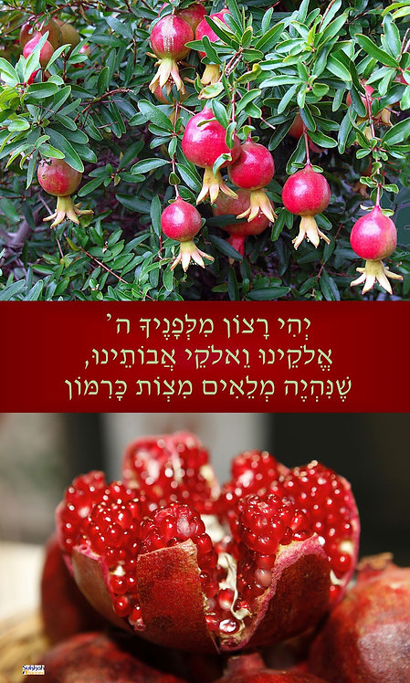 Pomegranate Blessing Sukkah Banner
