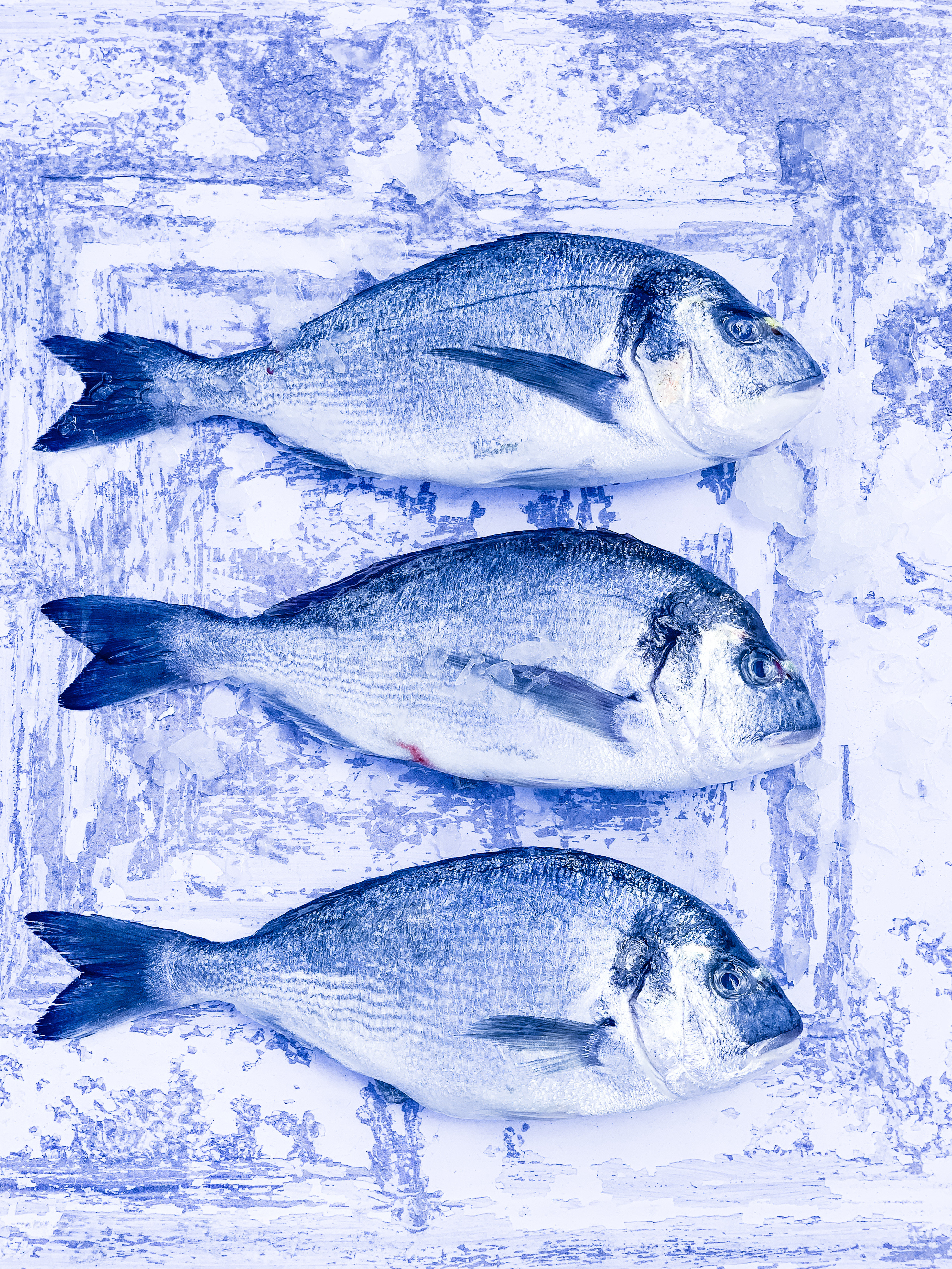 Fish- 28th March FULLY BOOKED
