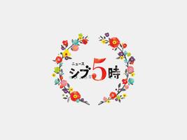 NHK ニュースシブ5時 Title logo design