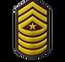 14 Sergeant Major.png