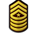 14 Sergeant Major.png