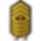 16 Sergeant Major of the Army.png