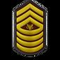 13 Master Gunnery Sergeant.png