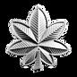 24 Lieutenant Colonel.png