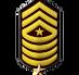 15 Command Sergeant Major.png