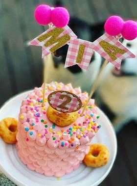 Brilliant Dog Birthday Cakes Funny Birthday Cards Online Necthendildamsfinfo