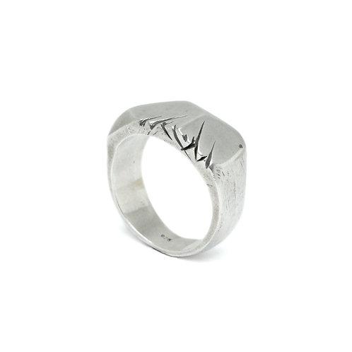 Floyd Ring