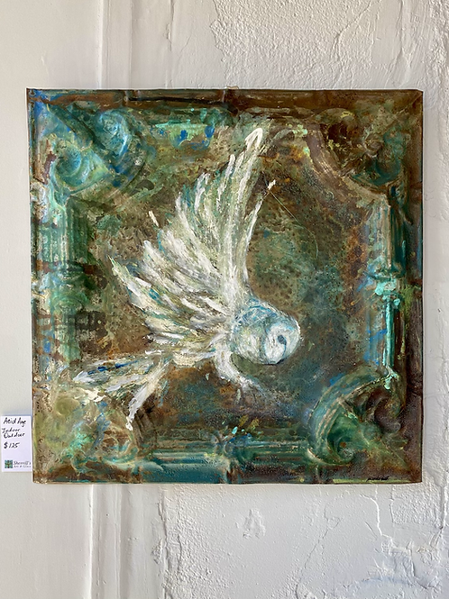 Tin Owl, white wings