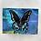 Thumbnail: Butterfly Kiss