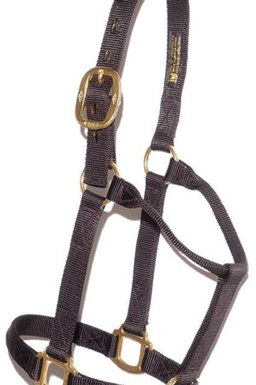 "#102 BIG ""D"" MEDIUM HORSE HALTER"