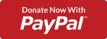 christmaswishct-donate-with-paypal-large