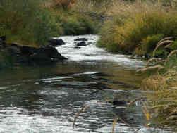 Mouth of Lapwai Creek, Spalding Park
