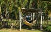 Napping Hammocks at University, Bahia