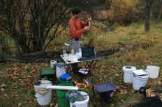 Processing fish (Rick Hartson)