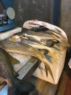 Catfish in Ver-o-Peso Market