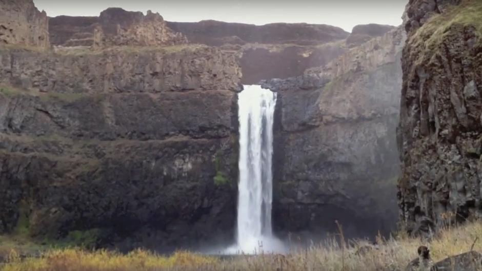 Fall Chinook spawning below Palouse Falls