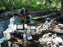 Electrofishing (Rick Hartson), netting (Jeff Caisman), Processing (Emily Benson)