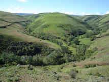 Lapwai basin