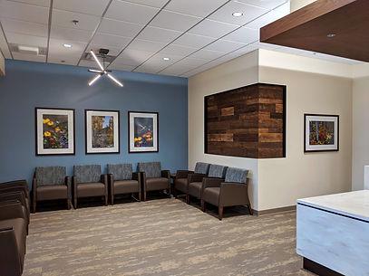 Mountain Office Art Installation.jpg