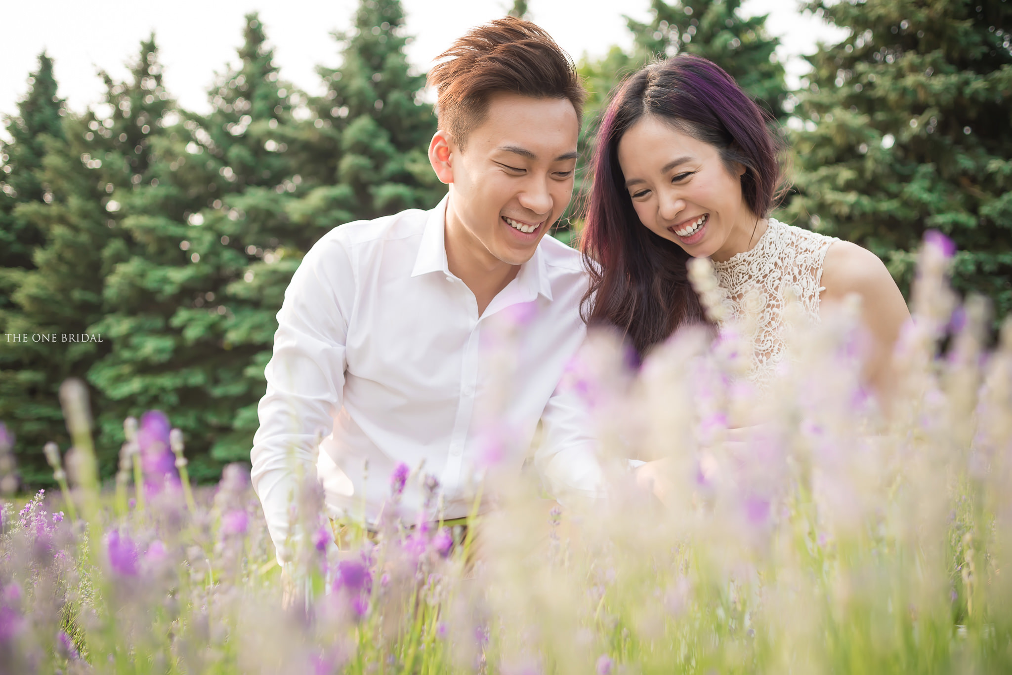 Lavender Farm Engagement Photo