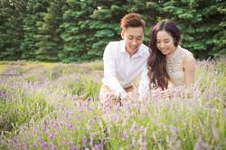 Lavender Farm Engagement Photo