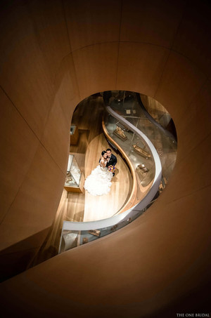 Bride and Groom Wedding Photo at Art Gallery of Ontario AGO
