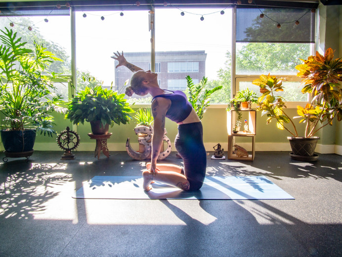 Flourish on Colley Studio | Yoga, Meditation, and Fitness Classes