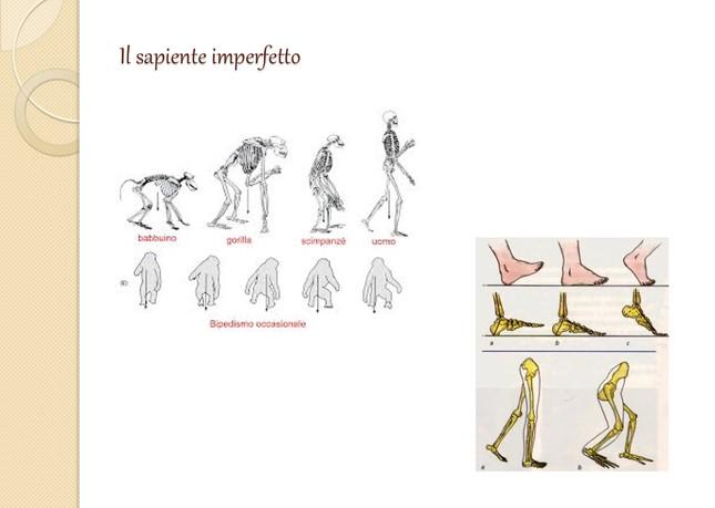 Imperfezione_Ammirati.mp4
