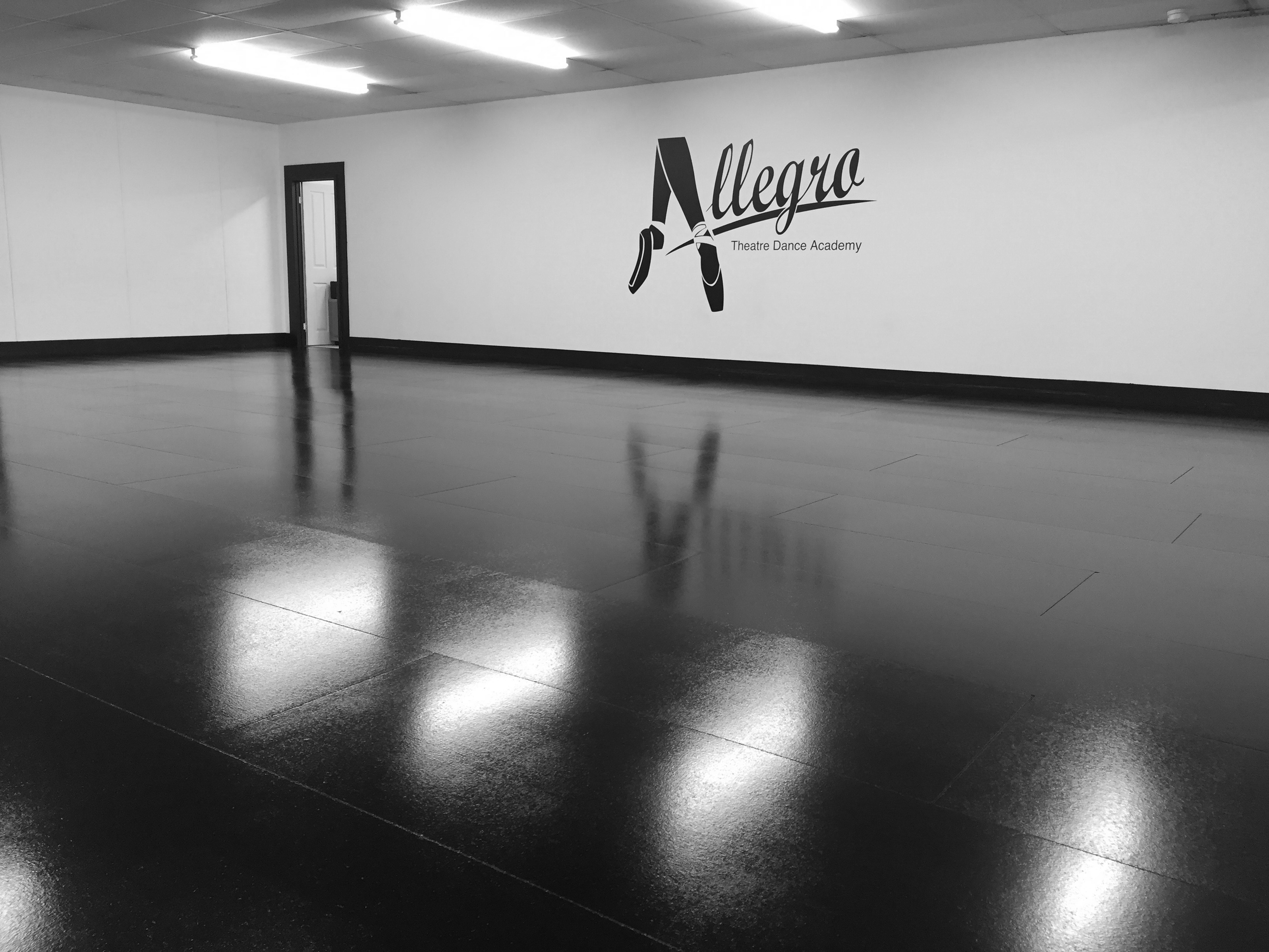 Studio1-main-Allegro-Theatre-Dance-Academy.jpg