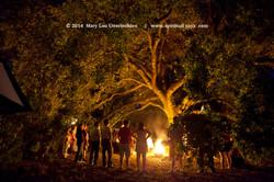 Wyld Fire 2014, Gryphon's Nest