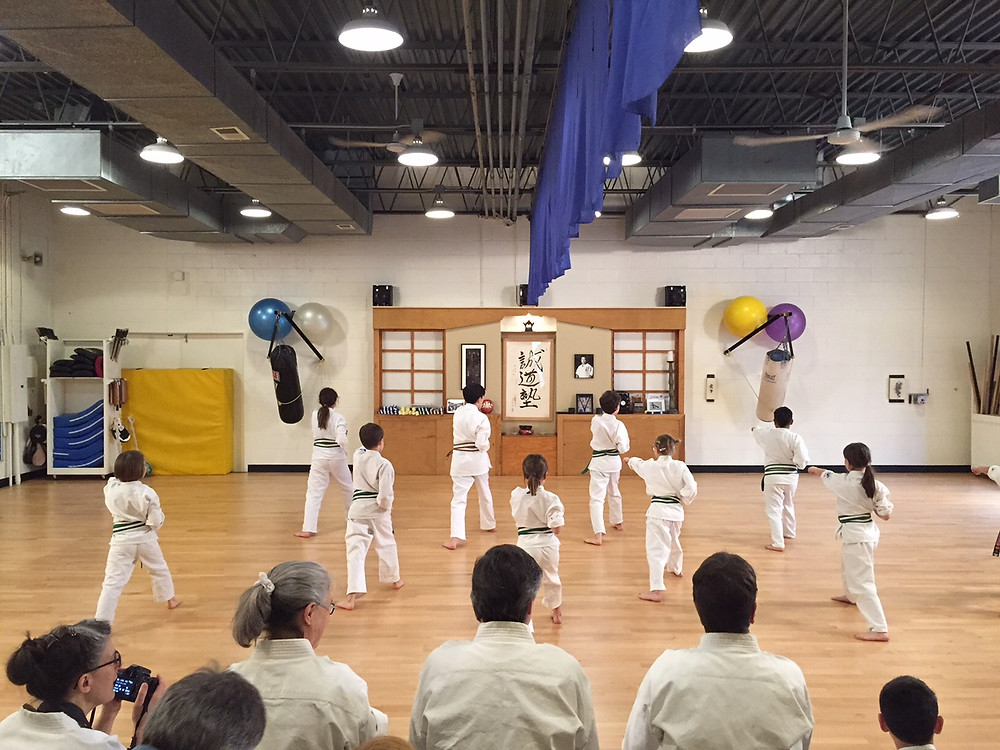 Group Karate Assessment / Photograph by Olivia Mulcahy