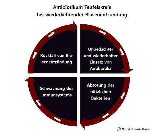 Antibiotikum Teufelskreis bei Blasenentz