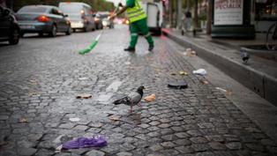 Propreté : après 6 ans d'occasions perdues, les Parisiens exigent des résultats !