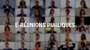 """Ponthieu, Bienfaisance, """"Embellir votre quartier"""", PLU : prochaines e-réunions publiques"""