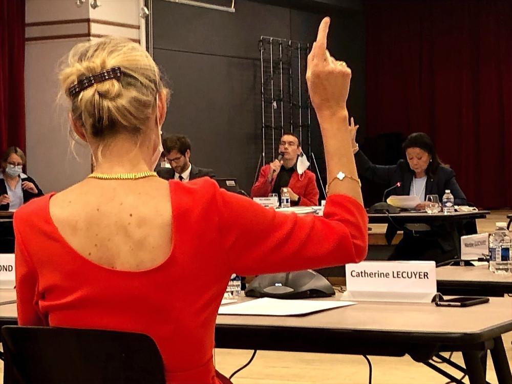 Vote en cours de séance du Conseil du 8e arrondissement mardi 21 juillet 2020