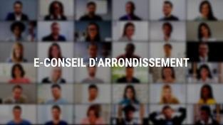 E-conseil d'arrondissement du 22 juin 2001