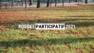 Budget Participatif 2021 : 56 projets déposés pour le 8e