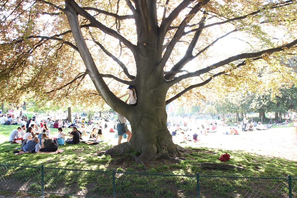 """Le parc Monceau, """"poumon vert"""" du 8e"""
