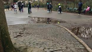 Remise en état de la piste de roller du parc Monceau : une étude est en cours
