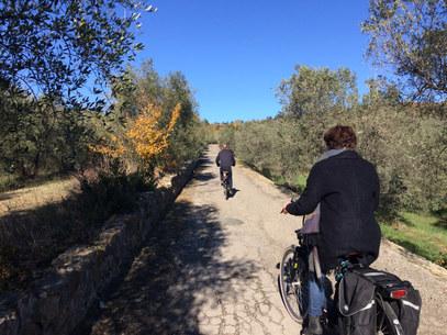 Quiet Scenic Routes