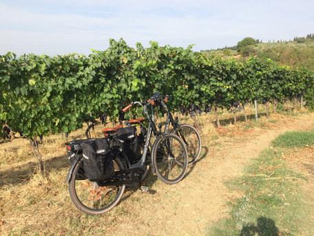 Cycle your E-Bikes Through Chianti Vineyards