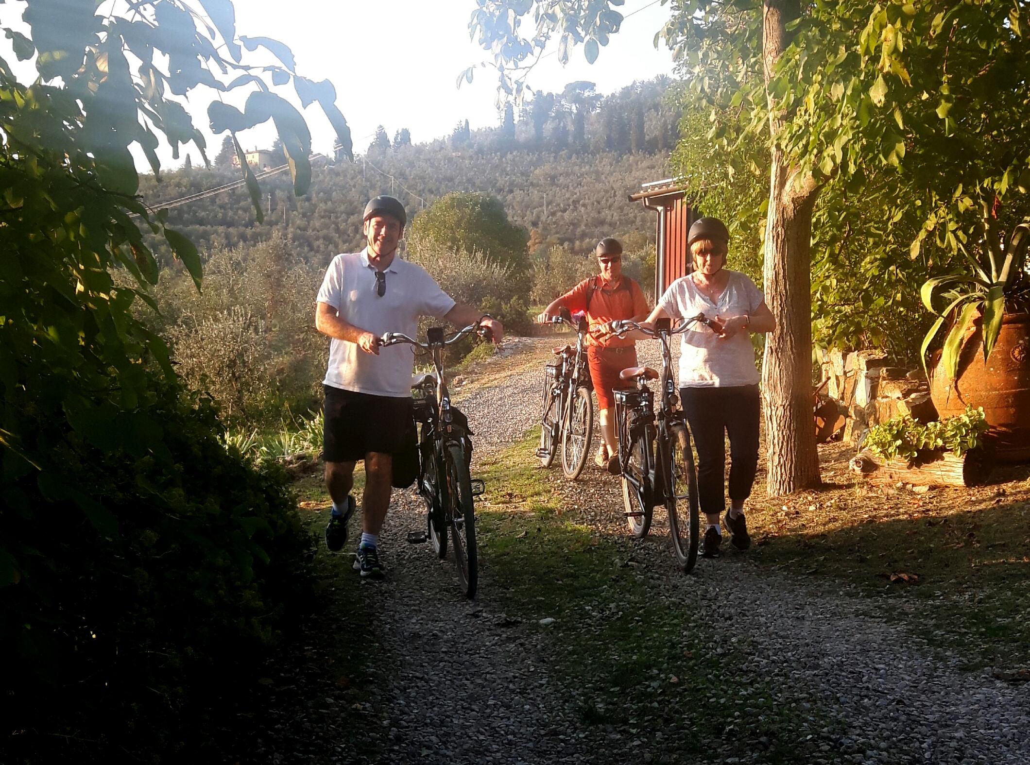 Group on rental bikes florence