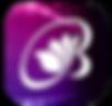 iBLTV人间卫视-icon.png