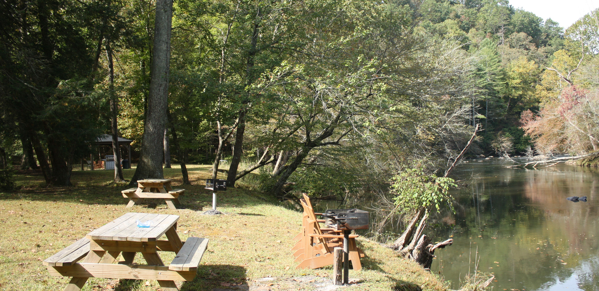 Behind Lodge - Grills & Picnic area