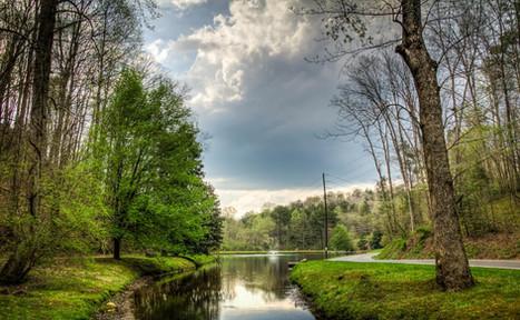 Duck Pond Creek
