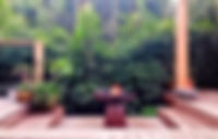 IMG_4517_edited_edited.jpg